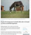污蔑中国人吃光了南非的驴 外媒这是啥心态?