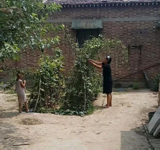弟弟和妈妈(供图:王心仪)