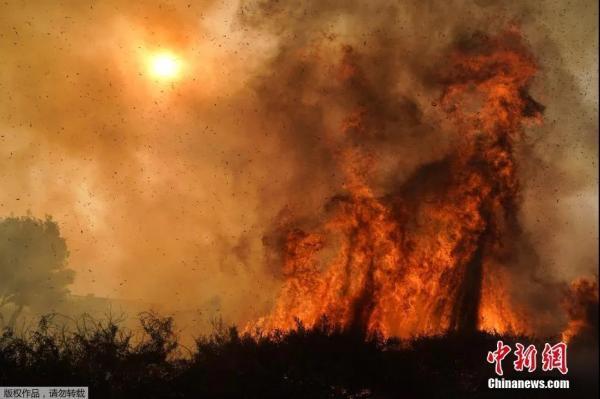 美国加州山火面积持续扩大数万居民撤离。