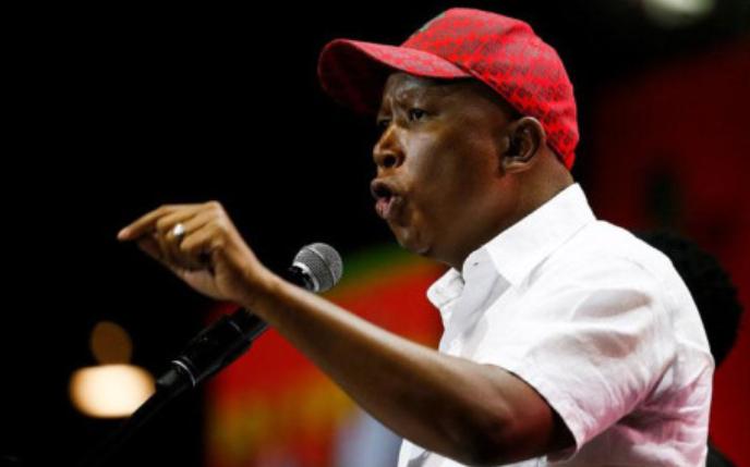 南非经济自由斗士强烈呼吁推迟重新开放学校和地方选举,开放边境